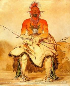 Buffalo Bull A Grand Pawnee Warrior