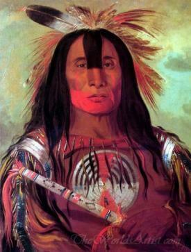 Buffalo Bulls Back Fat Head Chief Blood Tribe