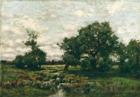 Meadow Near East Hampton