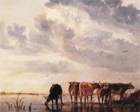 Cows In A River