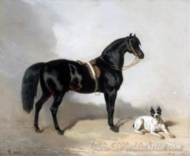 An Arabic Horse And Bulldog