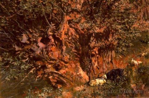 Arbol Centenario  (Centennial Tree)