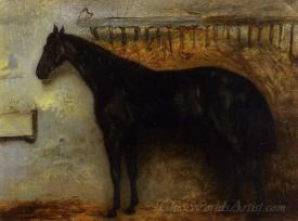 Black Horse In A Stable