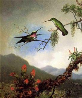 Amethyst Hummingbirds