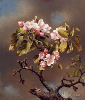 Branch Of Apple Blossoms Against A Cloudy Sky