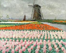 Bulb Fields With Windmill