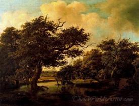 Marshy Wood