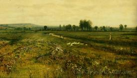 An Meadow Landscape With Geese By A Stream