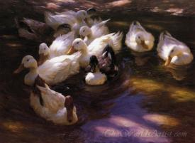 Eleven Ducks In The Morning Sun