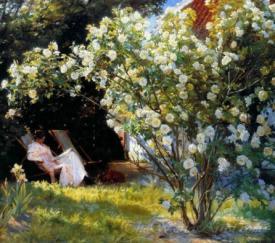 Marie In A Deckchair Reading