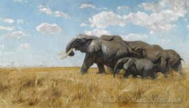 Migrating Elephants On The Move