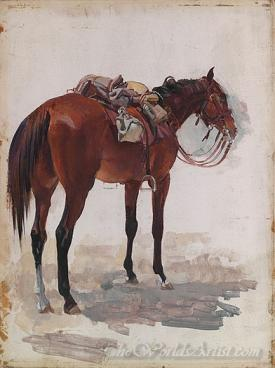 Australian Troop Horse Full Marching Order