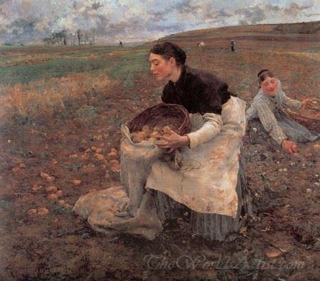 October Gathering Potatoes