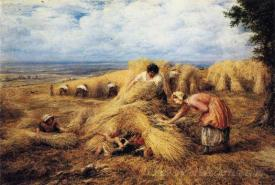 The Harvest Cradle