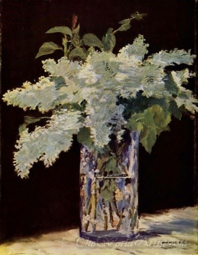 Still Life Lilac Bouquet  (White Lilac)