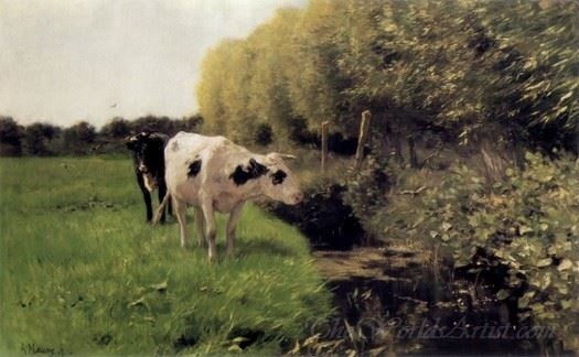 Cows In A Ditch