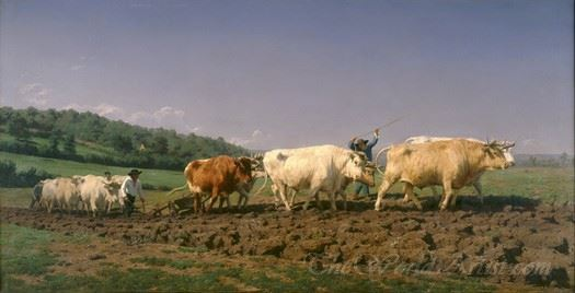 Plowing In The Nivernais