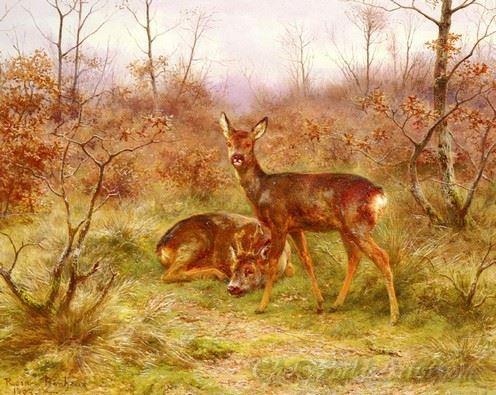 Un Couple De Chevreuils Dans Le Foret De Fontainebleau  (A Couple Of Deer In The Forest Of Fontainebleau)