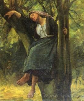 Asleep In The Woods
