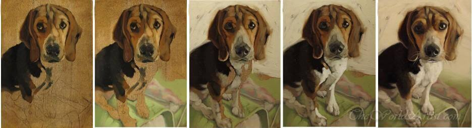 hand painted dog portrait on canvas in progress how it is painted