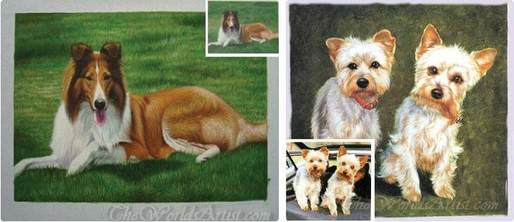 pet photos made into a pet portrait